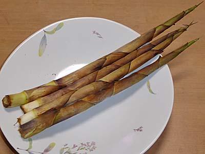 ねまがりたけ 根曲がり竹をグリルで焼いた