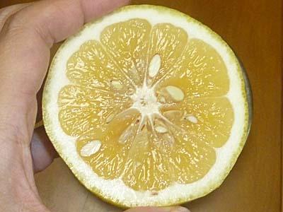 http://foods.nippon-umai.com/img/P1070807_1.jpg